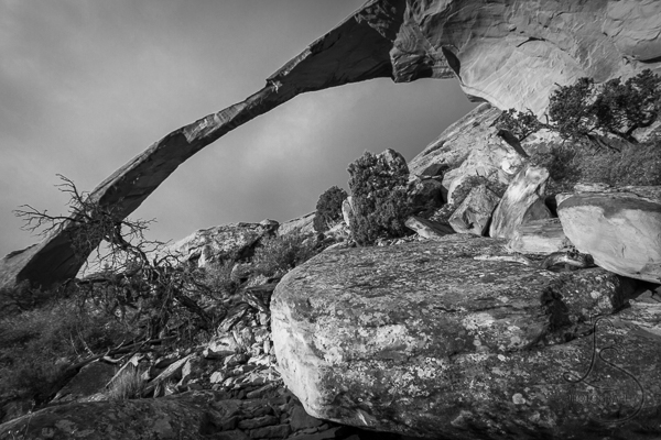 Landscape Arch in Arches National Park | LotsaSmiles Photography