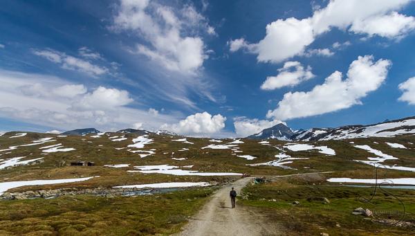Aaron walking down the service road toward the trail in Krossbu | LotsaSmiles Photography