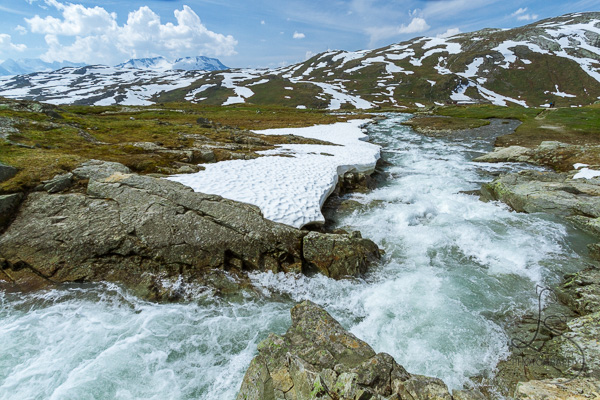 A creek flowing through the tundra landscape | LotsaSmiles Photography