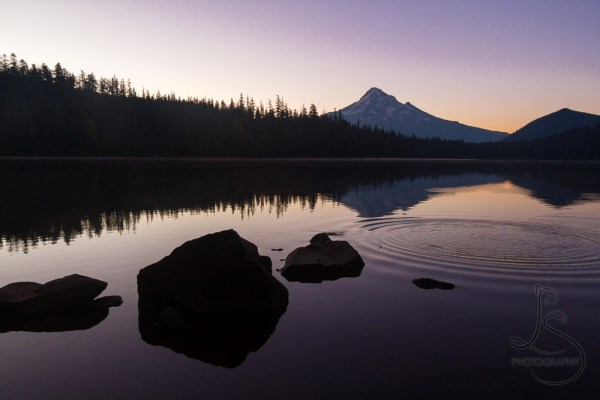 Mount Hood is mirrored in Lost Lake in the early rays of sunrise