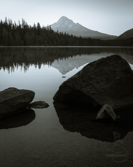 Mount Hood reflected in Lost Lake in the early morning, in monochrome | LotsaSmiles Photography