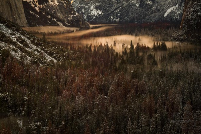 Evening mist in a wintery Yosemite Valley | LotsaSmiles Photography