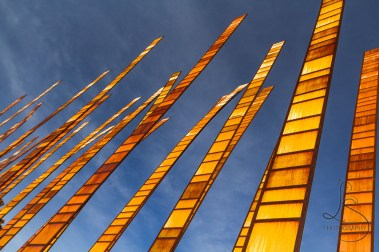 The Grassblades art installation at Seattle Center reach toward the heavens | LotsaSmiles Photography