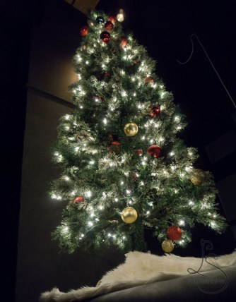 Small Christmas tree illuminated with decorations | LotsaSmiles Photography