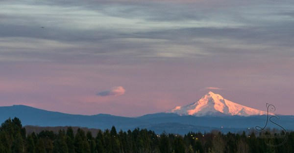 An airplane flying into the distance over a sunset-lit, snowcapped Mount Hood   LotsaSmiles Photography