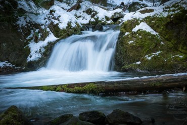 Why Winter is a Great Time to Visit a National Park