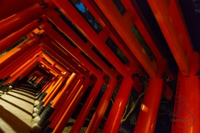 Thousands of red gates wend their way up the mountain at Fushimi-Inari, each a donation from local businesses in hopes of winning favor from the rice god.