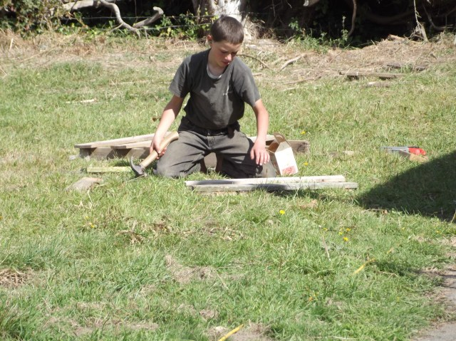 Boy # 2 is working on building a workshop to store his tools in, in this picture.