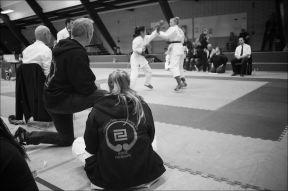 2016-dm-karate-118