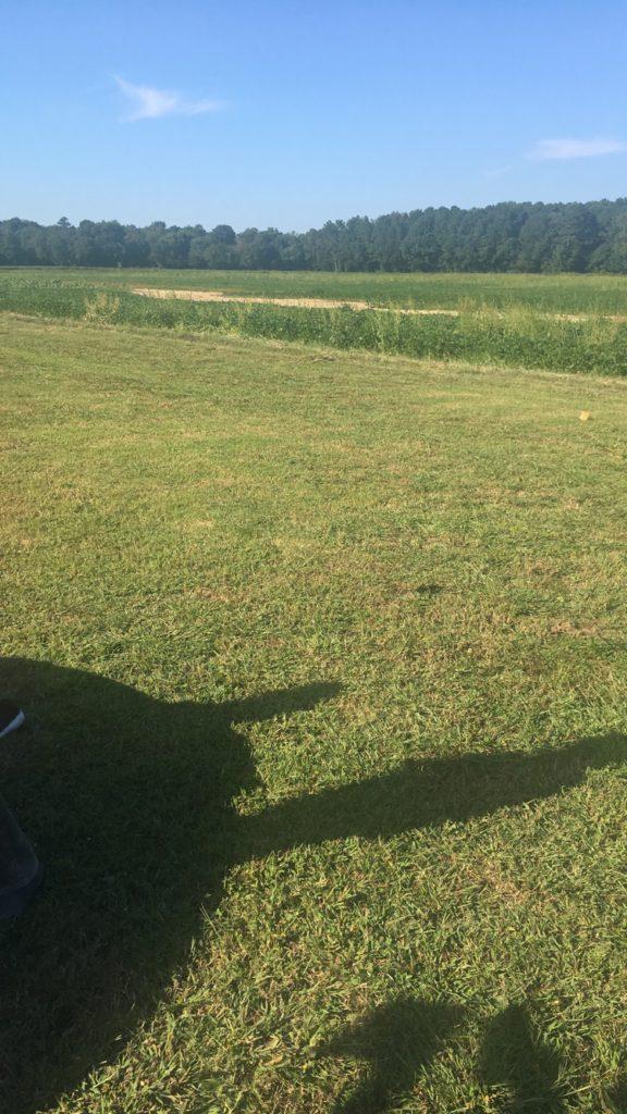 Odom Farm Carolina Blogging Meet-Up