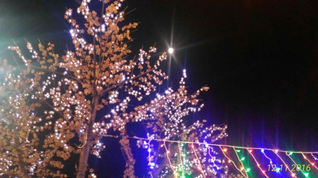 Lovely moon view in Taiwan blending with the Christmas lights!