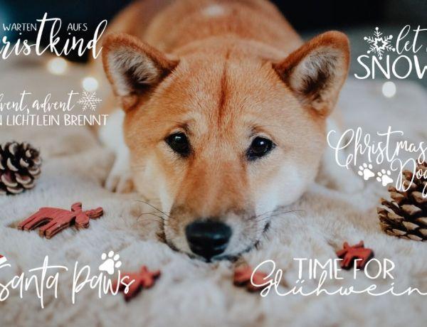 Weihnachtliche Story Sticker