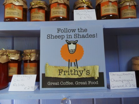 Follow the sheep in shades