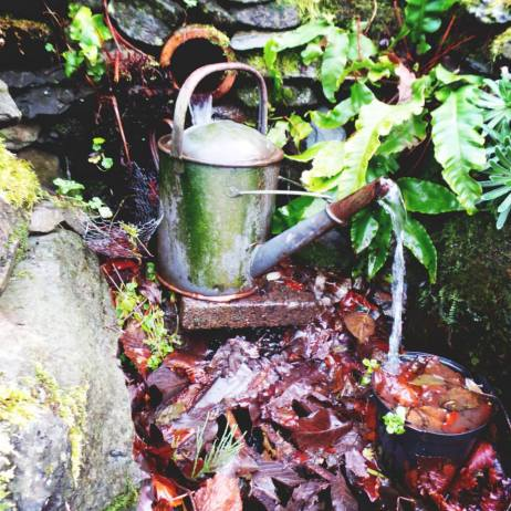 Watering can in the lakes