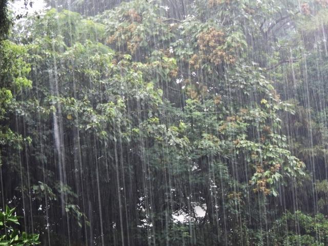 大雨警報の基準