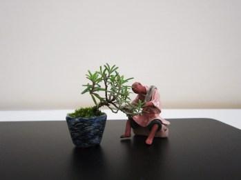 bonsai figurine