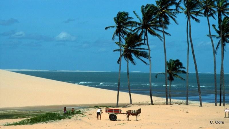 Praia do Preá - Jericoacoara - Ceará - por Christian-Odru