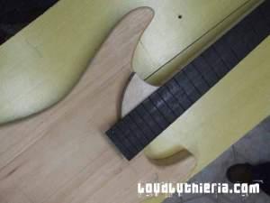 Washburn N4 custom