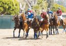 Polo in the Park Returns to Morven Park on Saturday