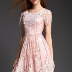 17 Schön Rosa Kleid Spitze GalerieAbend Ausgezeichnet Rosa Kleid Spitze Vertrieb