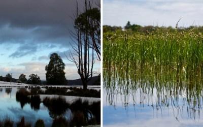 Midweek Moment #61: Lake Landscapes