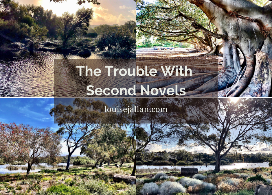 The Trouble With Second Novels