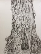 mechanical pencil sketch of a tree
