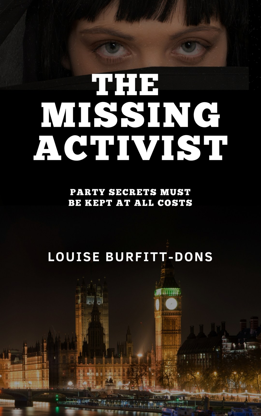 The Missing Activist political thriller ISBN 9780953852284