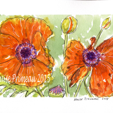 watercolour and ink poppies by Louise's ARTiculations