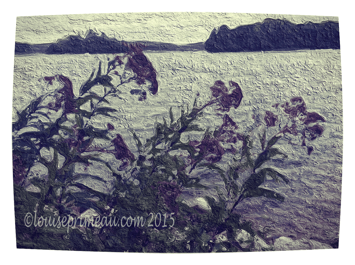Artistic soul - wild flowers by the lake