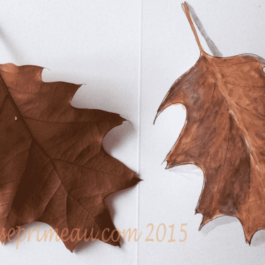 watercolour coppery leaves