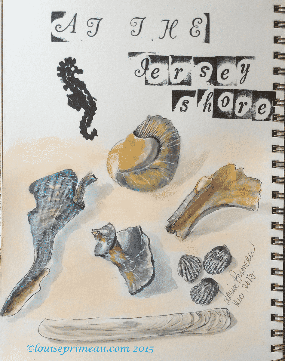 journal sketch, watercolours, of shells of the jersey shore