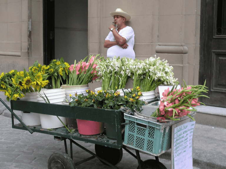 flower vendor in Havana