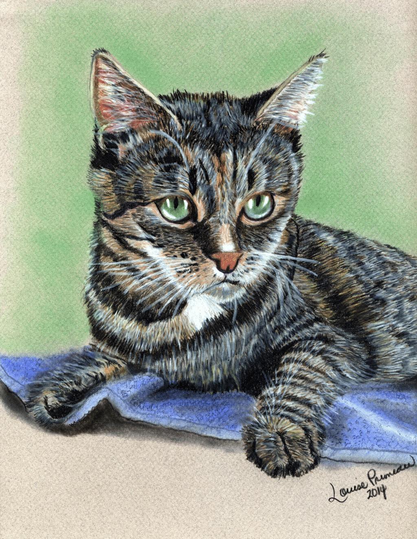Prismacolor pencil Cat Portrait of Georgie