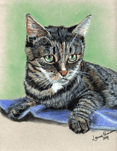 Prismacolor pencil Cat Portrait of Georgie
