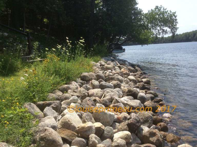photograph of  rocky shore at the cottage