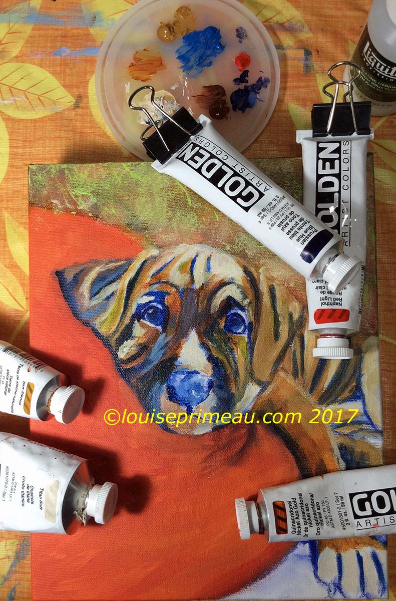 puppy portrait - adding colours
