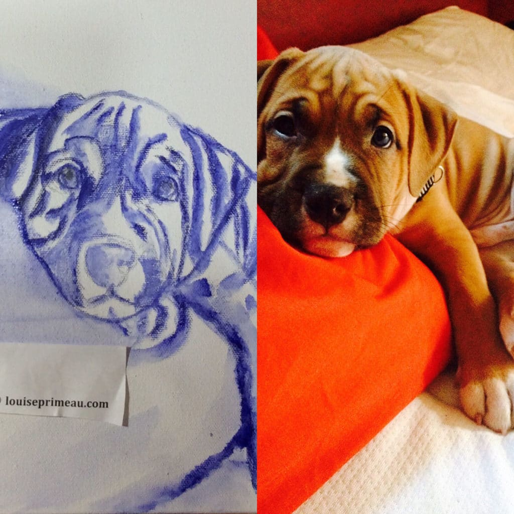 How I begin painting a puppy on canvas
