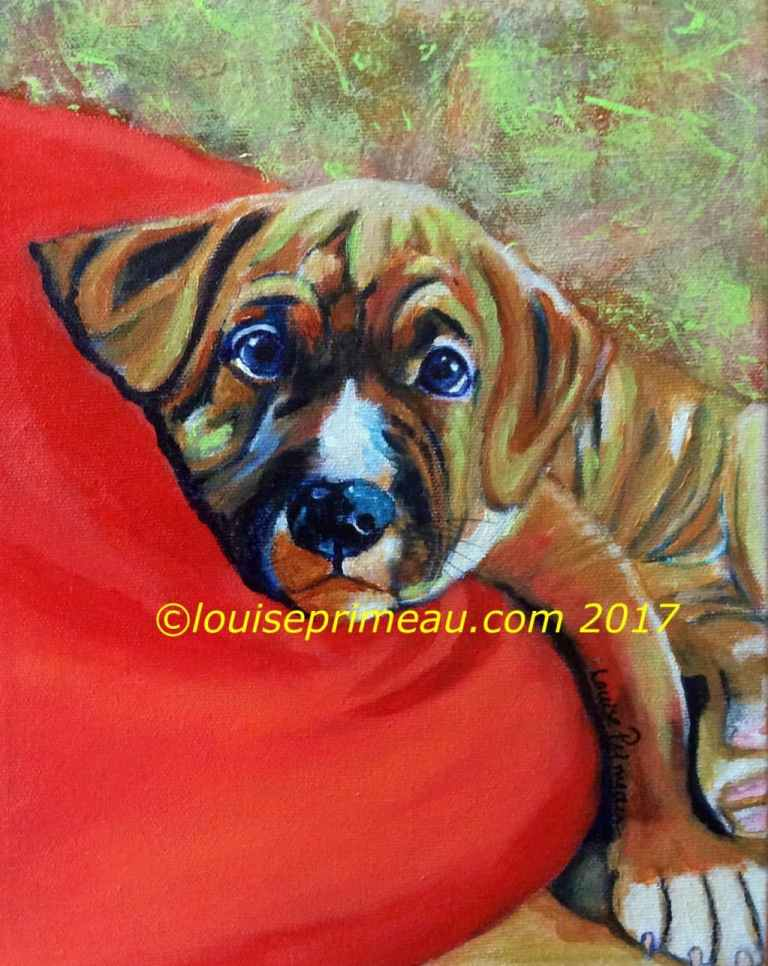 American Bulldog puppy painted in acrylics on 9x12 gallery wrapped canvas