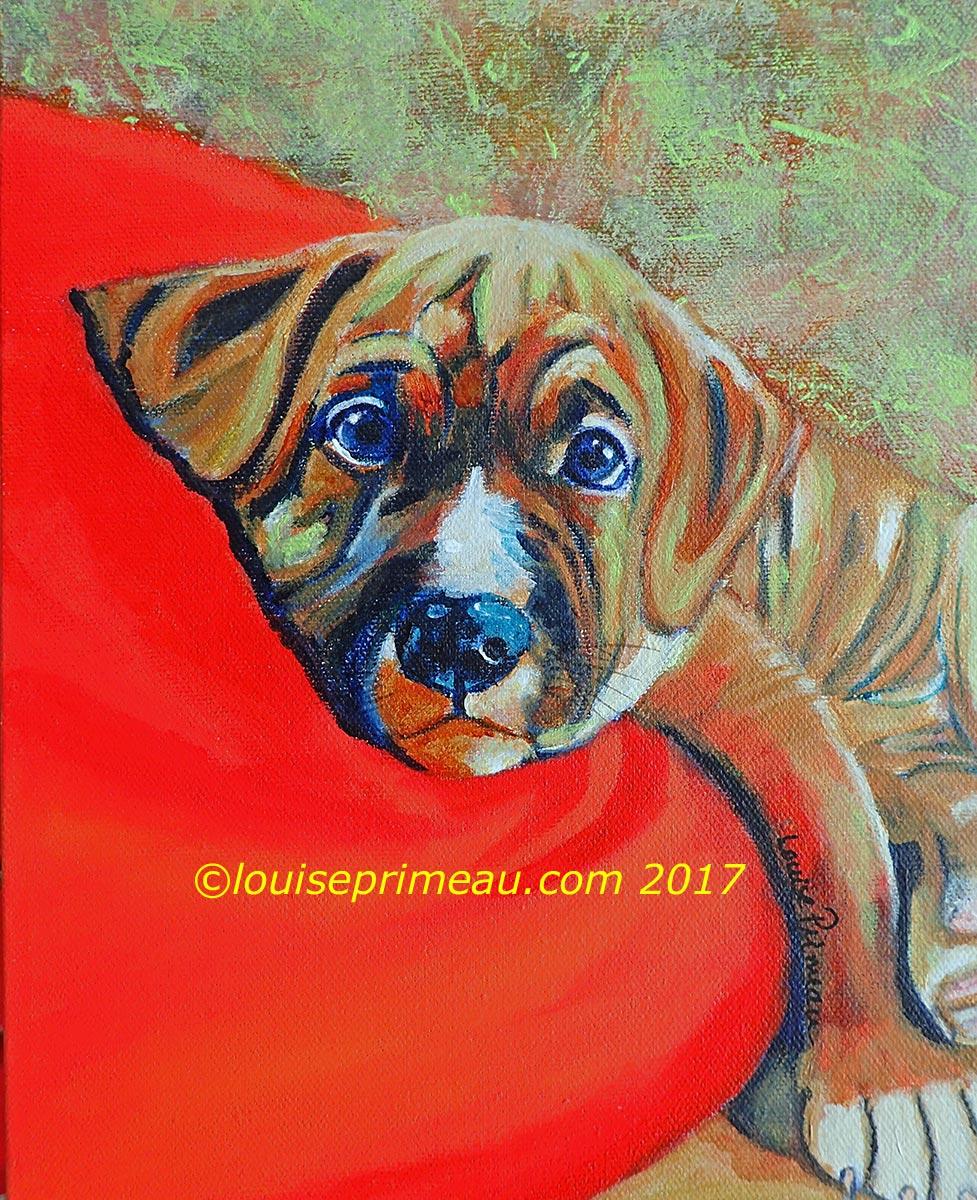 American bulldog puppy portrait in acrylics