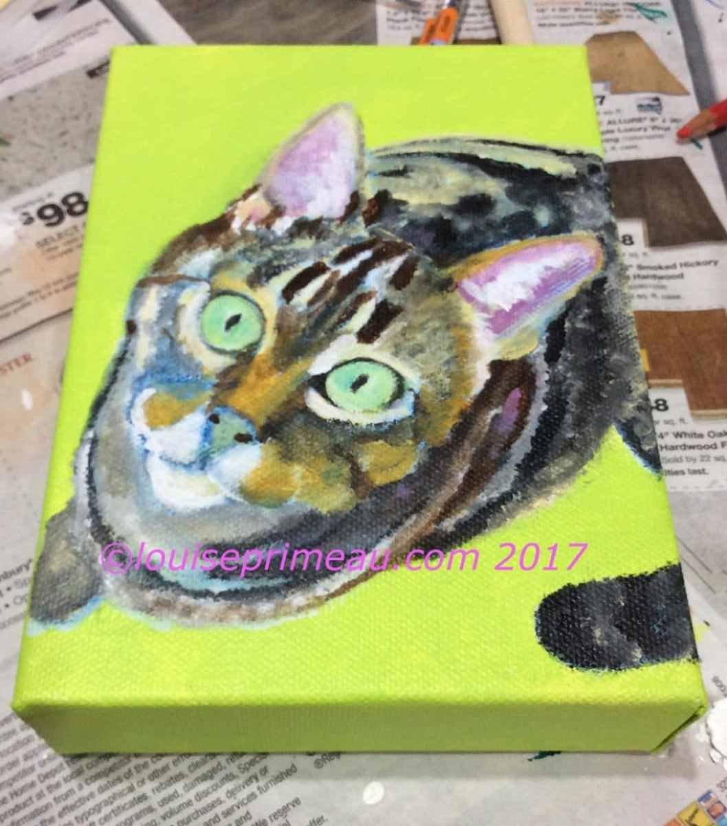 roughing in of colours for cat portrait