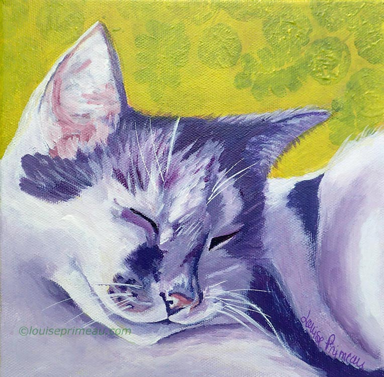 Pampered Cat Iggy; acrylic cat portrait by Ottawa artist