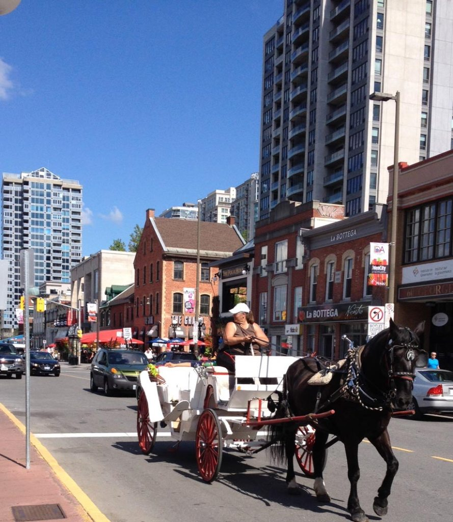 sightseeing in the Byward Market