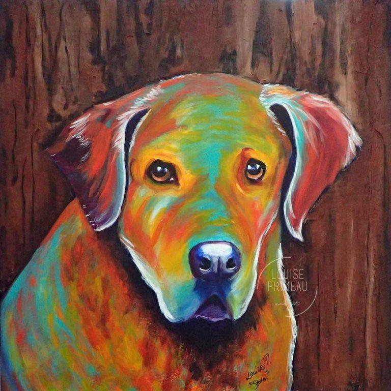 "Storm, a Chesapeake, acrylic on 20"" x 20"" canvas by Ottawa custom pet portrait artist, Louise Primeau."
