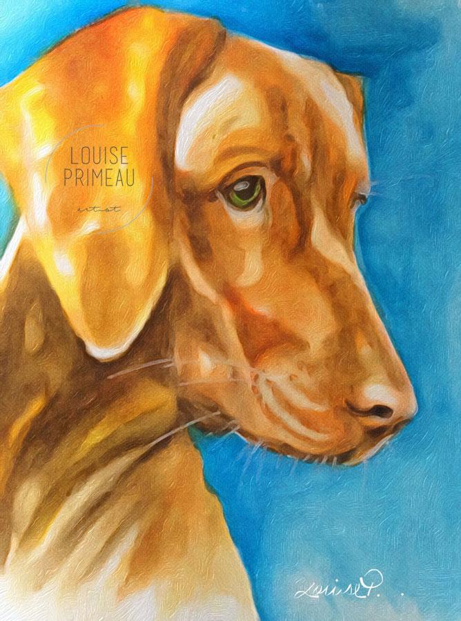 Bowzer, pet portrait digitally softened