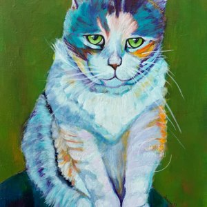 Sydney, colourful pet portrait by Louise Primeau.