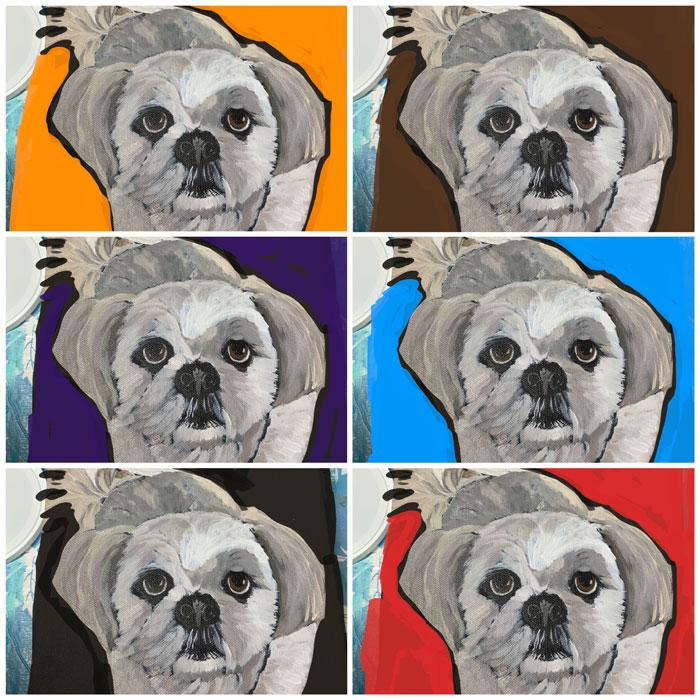 Pet portrait colour swatching in Procreate