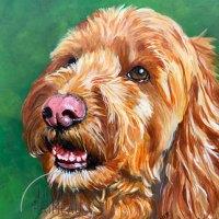 Winner of First Free Pet Portrait.