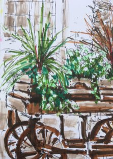 Plant cart at Chalk Farm bu Christine Milewska