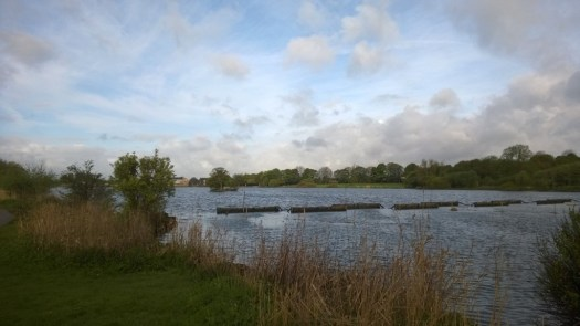 Yeadon Tarn - 7th May 2014